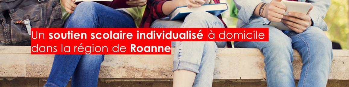 Bandeau-site-JSONlocalbusiness-Roanne